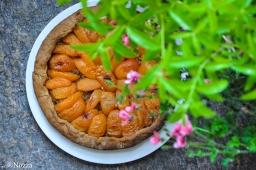 Crostata di albicocche al San Simone